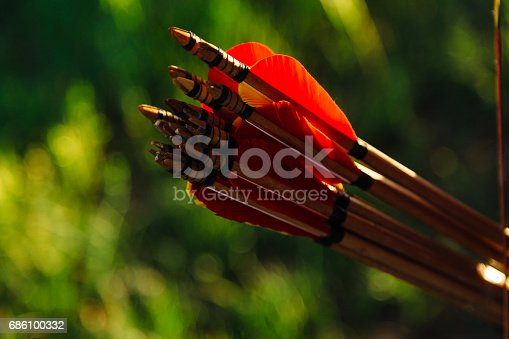 istock Arrows in the quiver on green background. Concentration, target, success concept 686100332