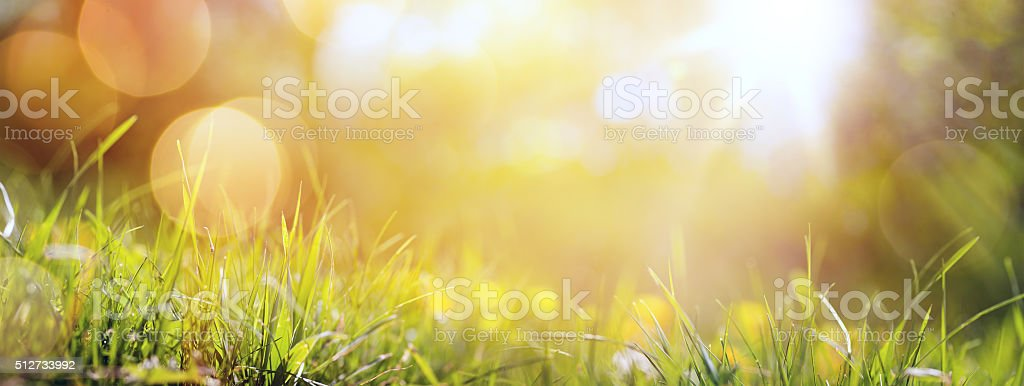 art abstract spring background or summer background with fresh g stock photo