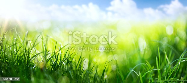 643781968 istock photo art abstract spring background or summer background with fresh grass 643781968