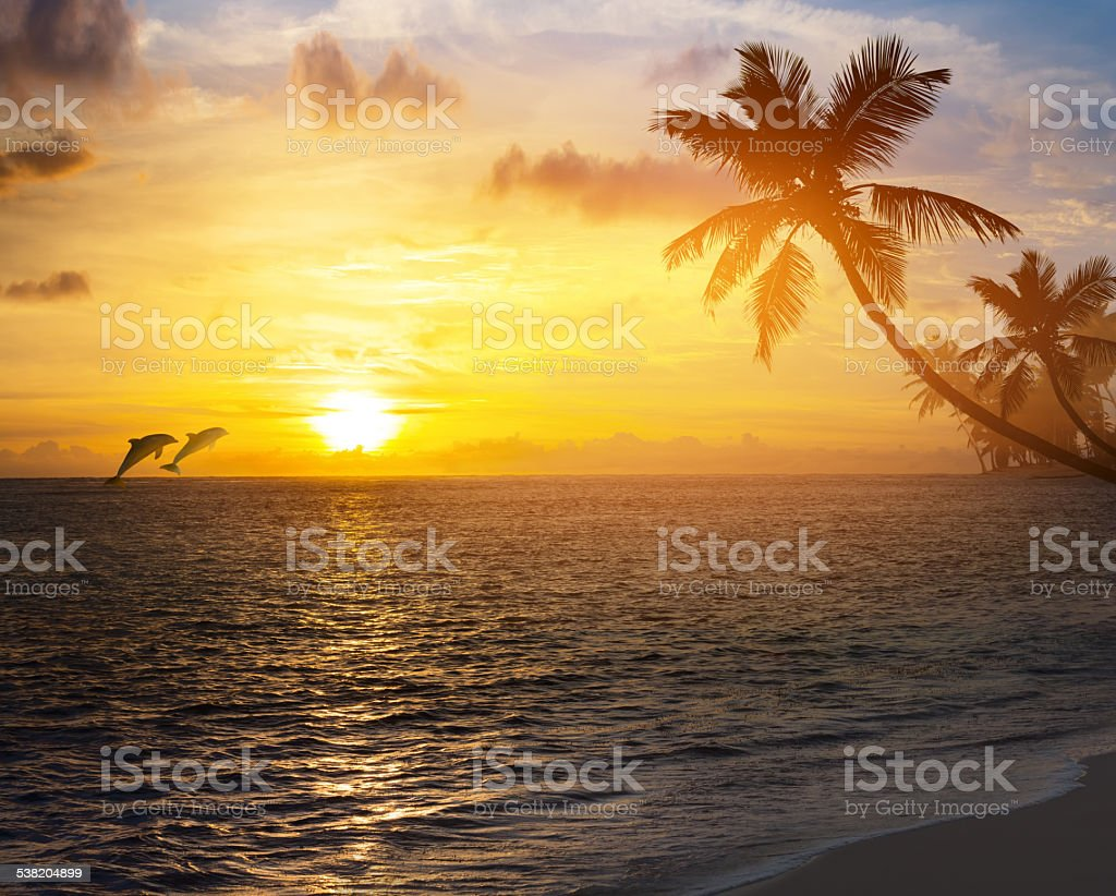 Art Beautiful sunrise over the tropical beach stock photo