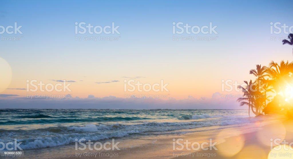 Art Beautiful sunrise over the tropical beach stock photo