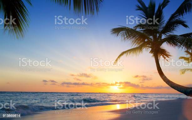 Art beautiful sunset over the tropical beach picture id913869814?b=1&k=6&m=913869814&s=612x612&h=y8cwhi zk0paiuw4trgw1gmwapw6md2ommvqr 4jyda=