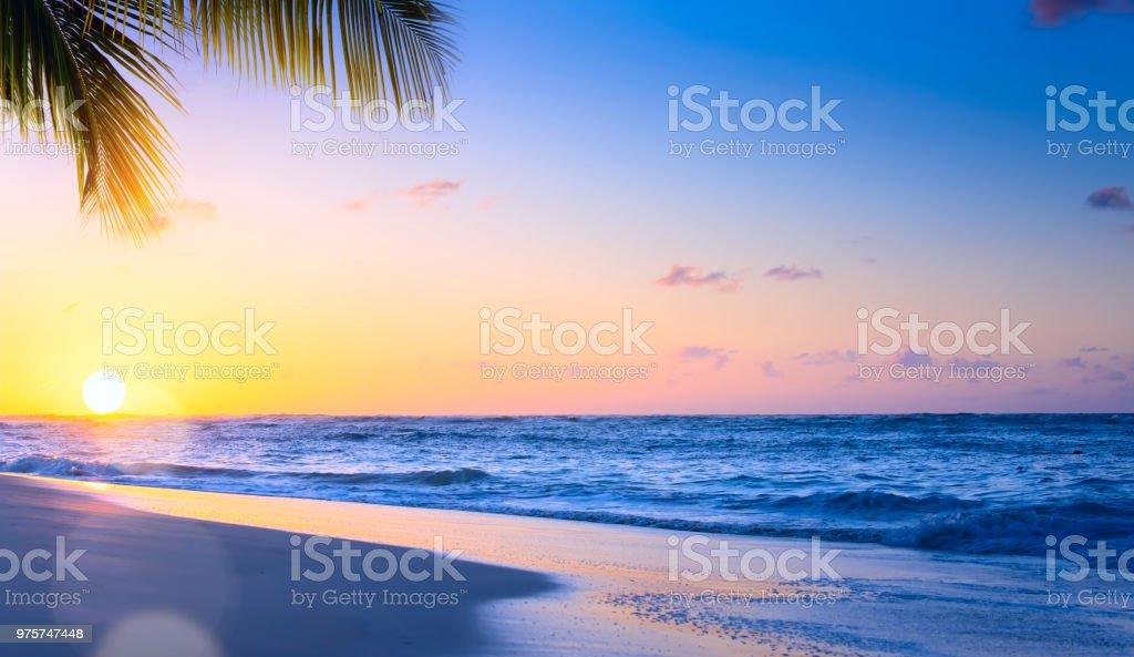 Art Beautiful sunset over the tropical beach stock photo