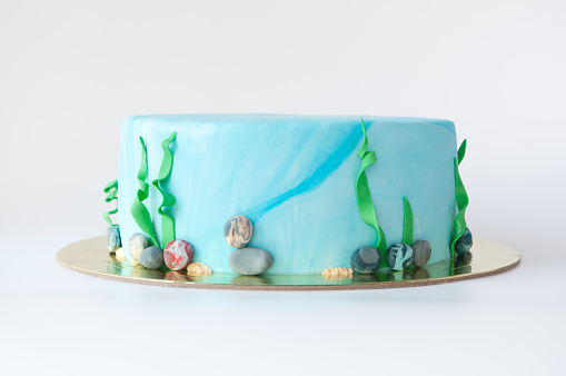 istock Art cake designed in the form of an underwater world with algae and pebbles. 882884970