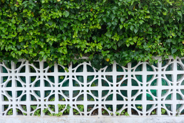 Art deco fence full of plant in the top half. Ivy green leaves. Art deco pattern fence. Cement and nature fusion. White and green. Wide version. Background stock photo