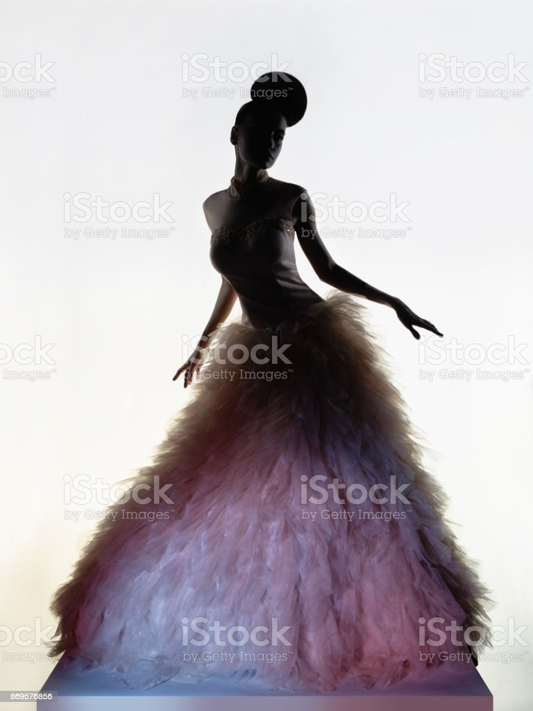 Art Fashion Studio Photo Of Beautiful Elegant Woman In Luxury Evening Dress Stock Photo Download Image Now Istock