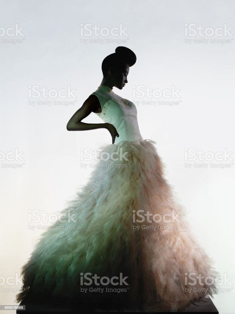 Art fashion studio photo of beautiful elegant woman in luxury evening dress. stock photo