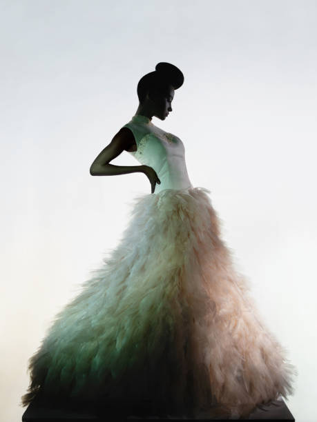 art fashion studio photo of beautiful elegant woman in luxury evening dress. - prom fashion stock photos and pictures