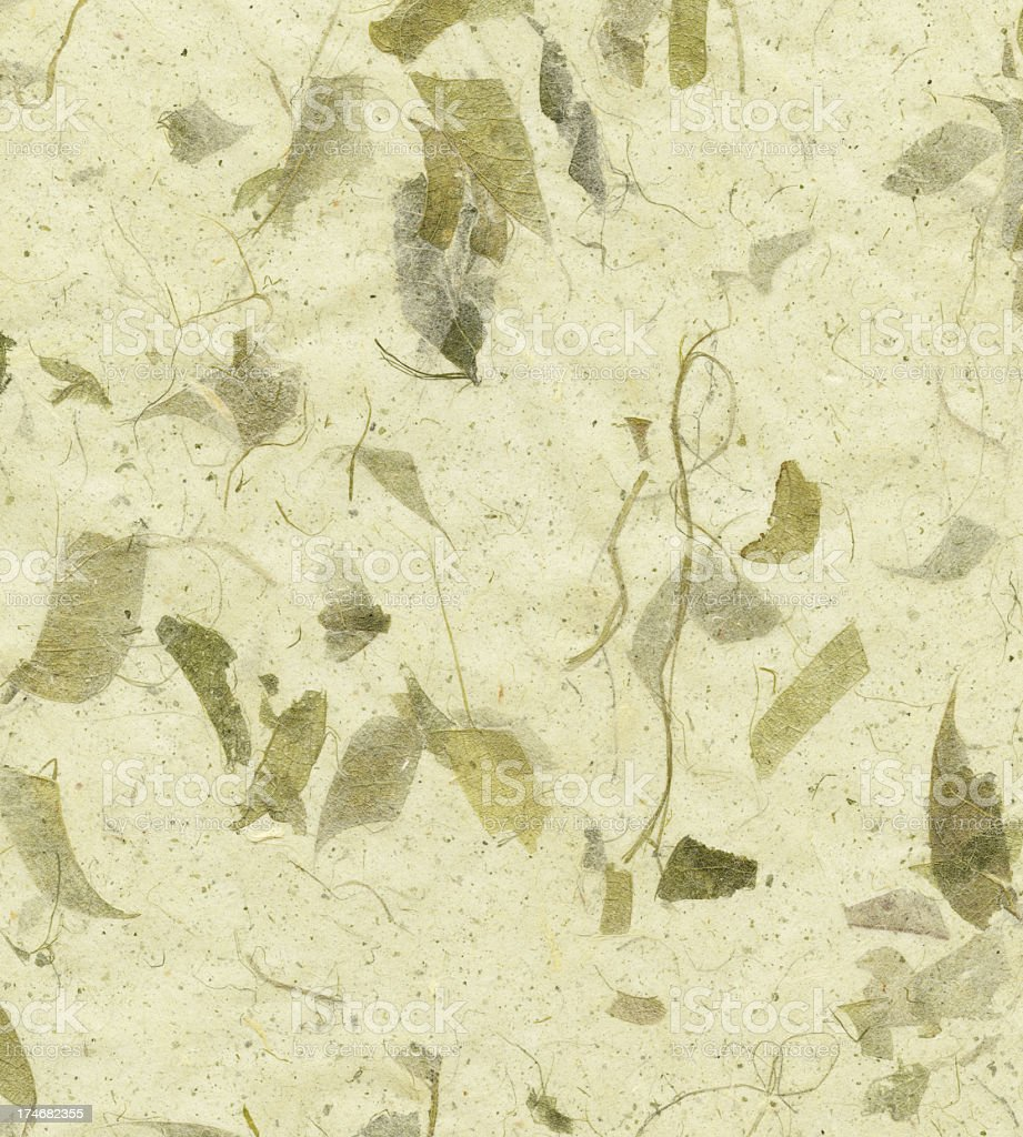 art paper with leaves royalty-free stock photo