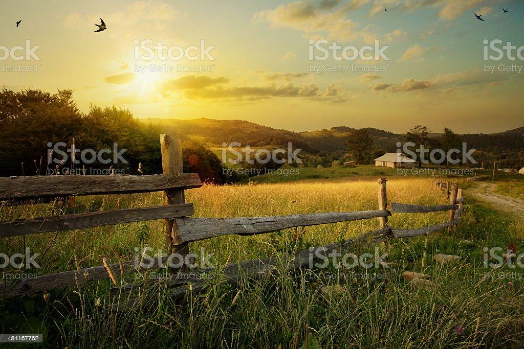 Arte paisagem. campo rural e grama foto de stock royalty-free