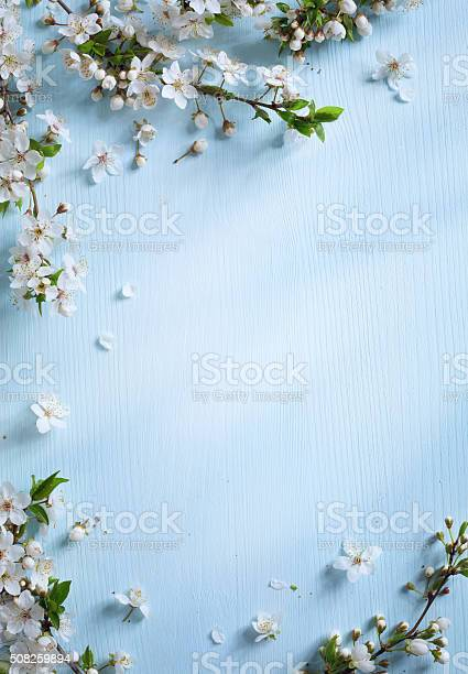 Art spring border background with white blossom picture id508259894?b=1&k=6&m=508259894&s=612x612&h=pirmupsw4njc n3nlywsusfmeozxtwjsdyg1z3gdj3u=