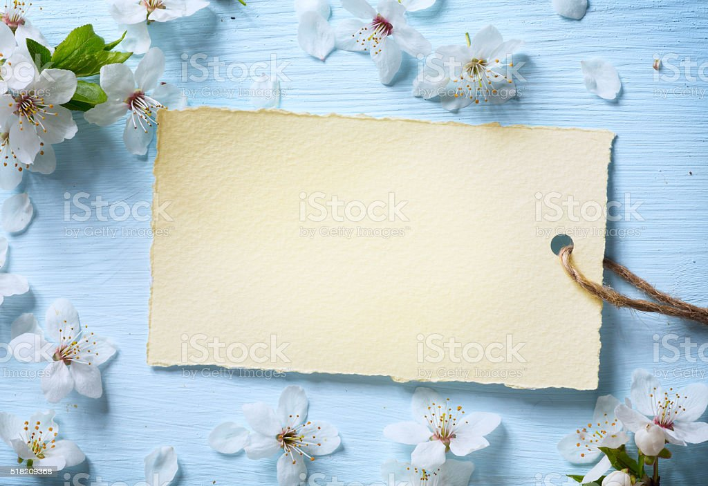 art Spring floral background with white blossom stock photo