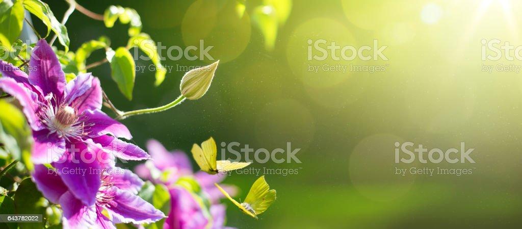 art Spring or summer flower background; Easter landscape stock photo