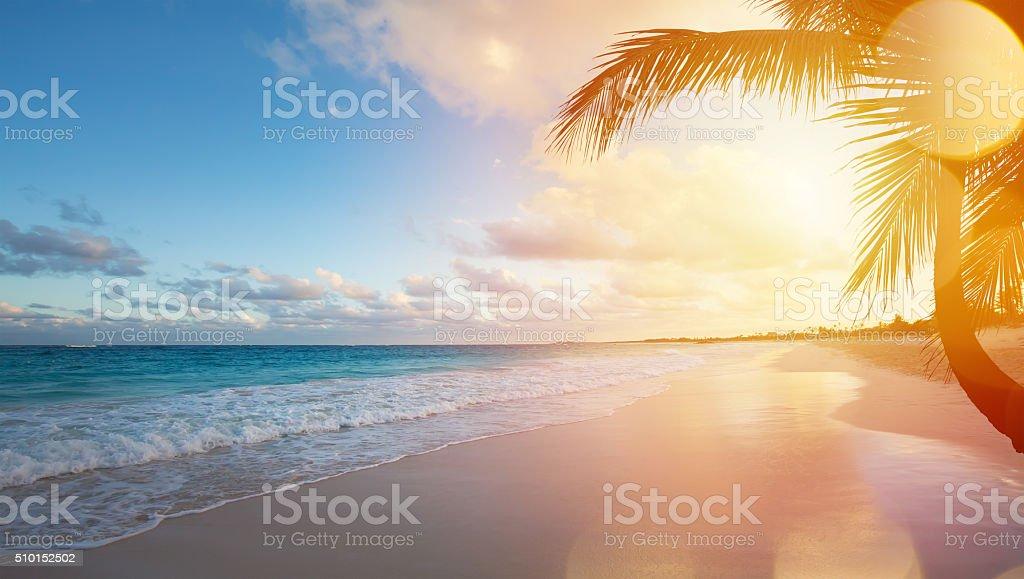 beach. Perfect Beach Art Summer Vacation Ocean Beach Stock Photo To Beach