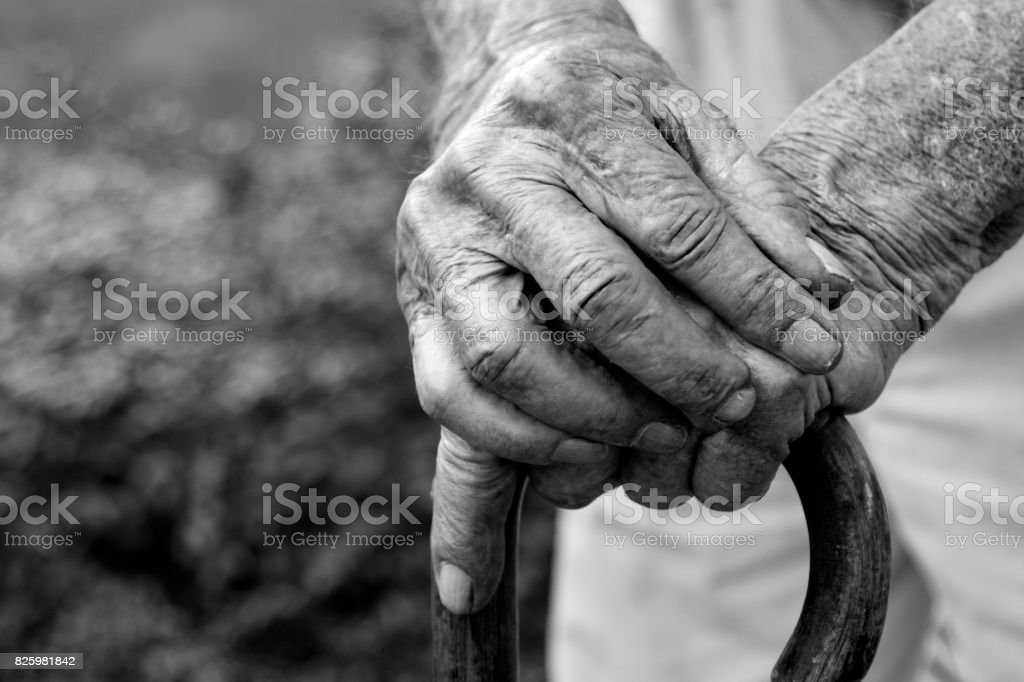 Arthritic Hands resting on cane in black and white. Looking down view at hands. stock photo