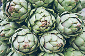 artichoke plants close-up panoramic