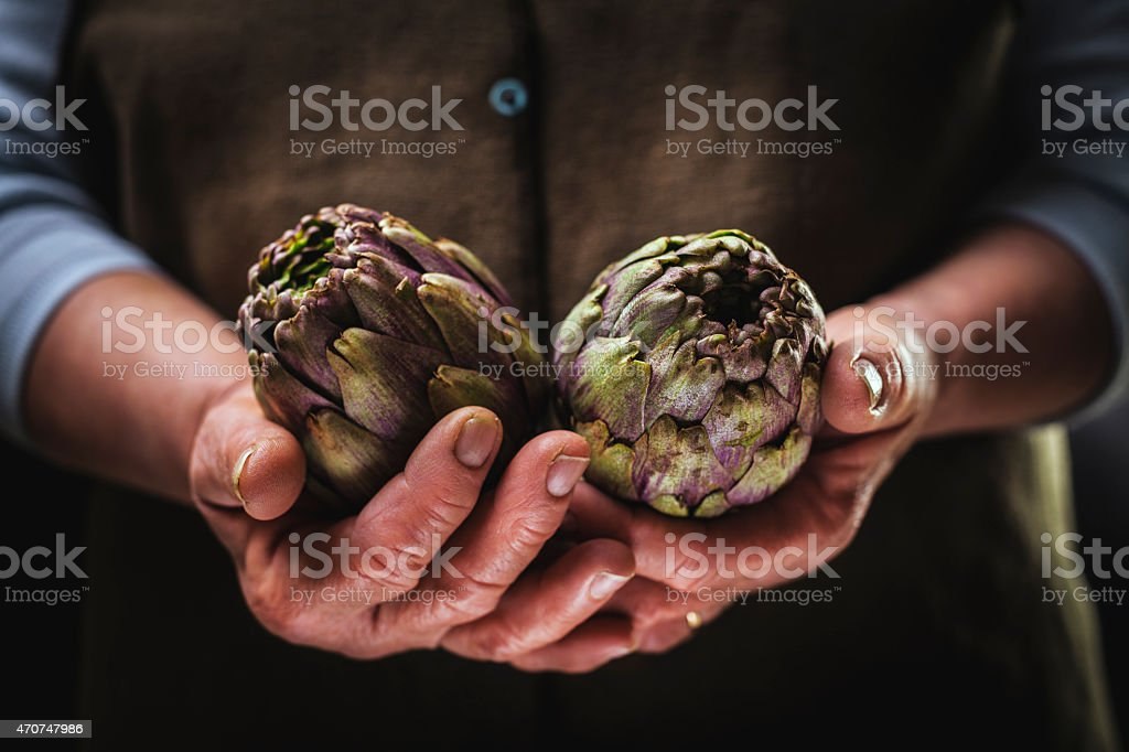 Artichoke in Hands stock photo