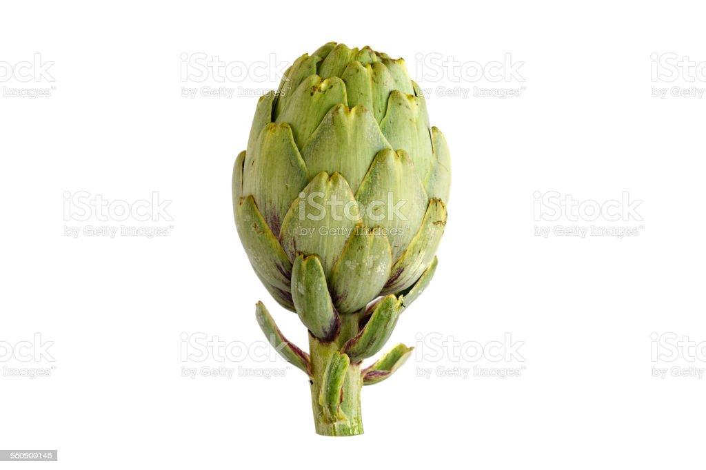 artichoke isolated on white background stock photo