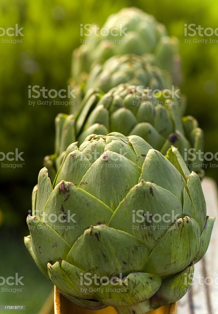 Artichokes at Farmer's Market royalty-free stock photo