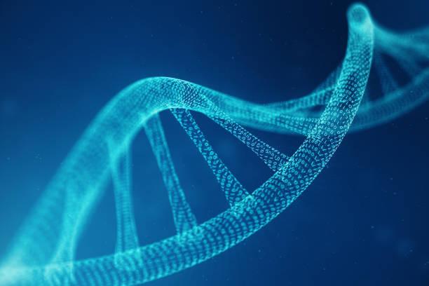 molécula de adn artificial intelegence. adn se convierte en un código binario. genoma de código binario del concepto. resumen ciencia tecnología, concepto artificial dna. ilustración 3d - adn fotografías e imágenes de stock