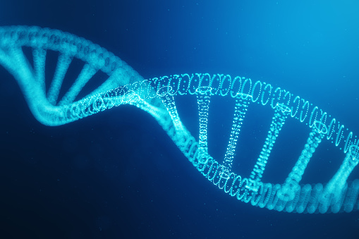 istock Artifical intelegence DNA molecule. DNA is converted into a digital code. Digital code genome. Abstract technology science, concept artifical Dna. DNA consisting particle, dots, 3D illustration 1139572038