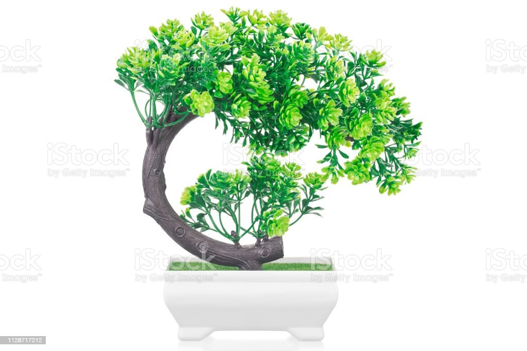 Artificial Bonsai Tree In Pot Isolated On White Stock Photo Download Image Now Istock