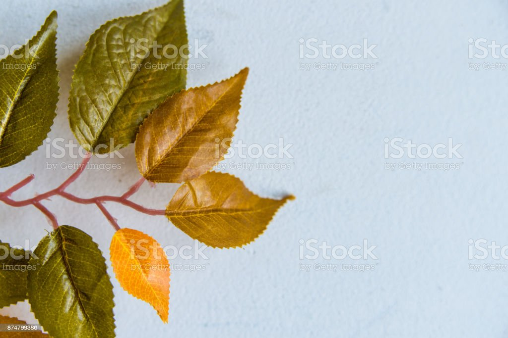 Artificial branch with green and yellow leaves stock photo