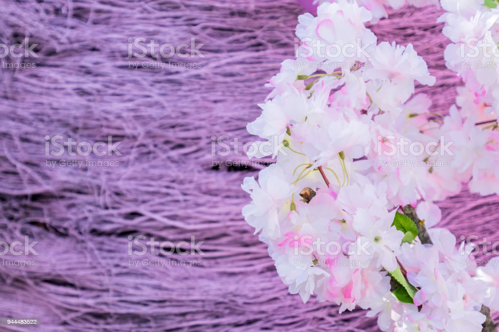 artificial branches of blooming apple tree on violet brushwood background stock photo