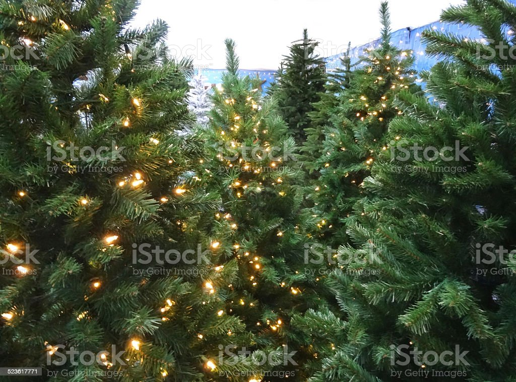 Artificial Christmas trees / decorations, green foliage-needles, white LED fairy-lights, banner stock photo