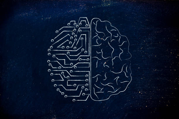 artificial circuits and human brain stock photo