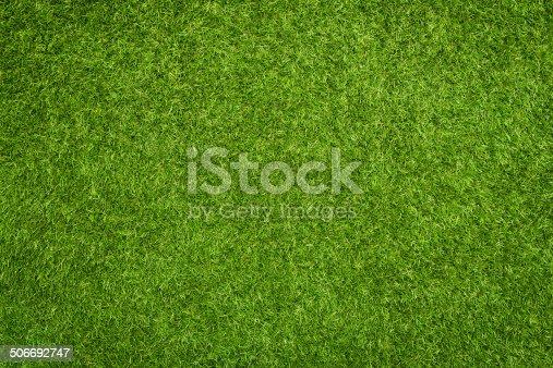 istock Artificial grass 506692747