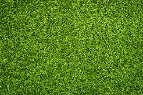 Artificial grass Close up of synthetic green grass texture directly above stock pictures, royalty-free photos & images