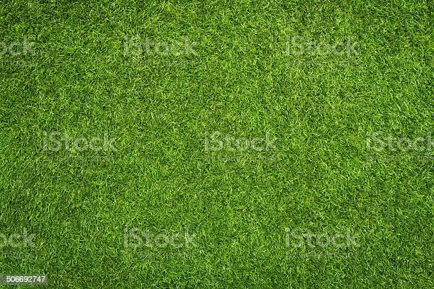 Photo of Artificial grass