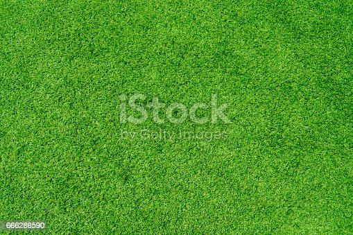 istock artificial grass 666286590