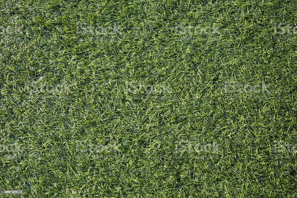 Artificial green grass background texture stock photo