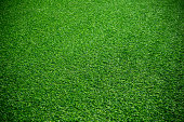 Artificial green grass textured background