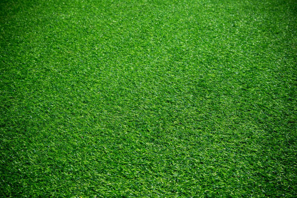 Artificial green grass textured background stock photo