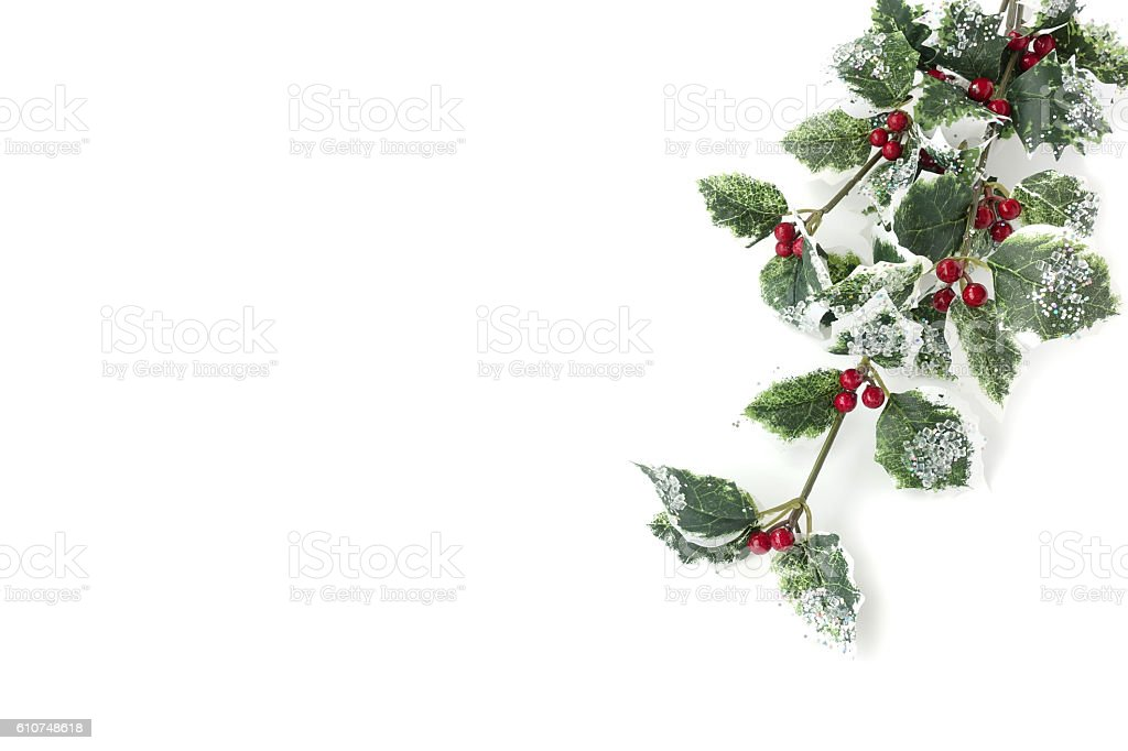 Artificial Holly branch with fruits - Ilex aquifolium stock photo