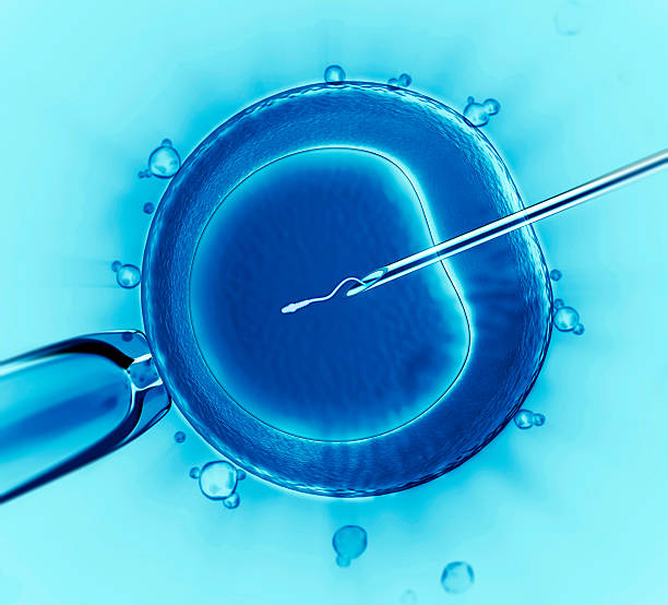 artificial insemination and the rights of women Artificial insemination and parental rights and obligations home blog family law divorce artificial insemination and parental rights and obligations the changing tides of family have extended the definition of the conventional family or nuclear family.