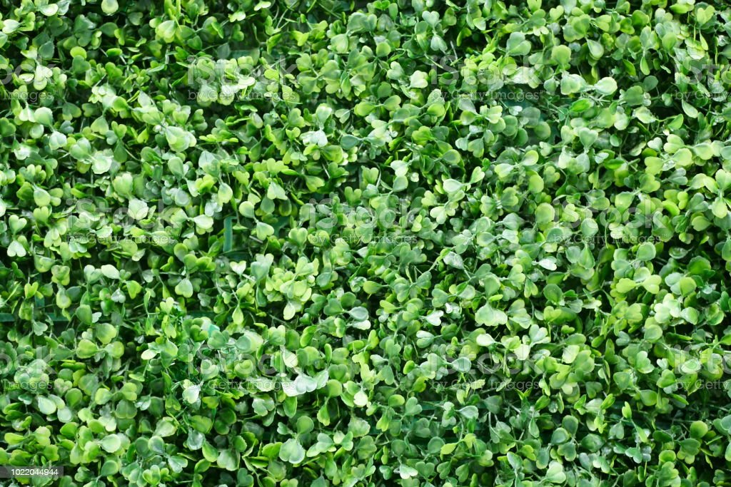 Artificial Leaves Background Stock Photo Download Image Now Istock