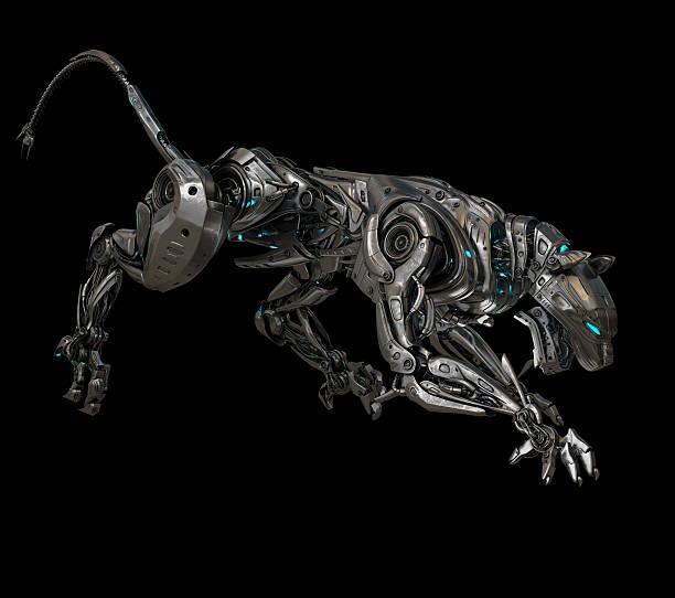 modell eines panthers - schwarzer puma stock-fotos und bilder