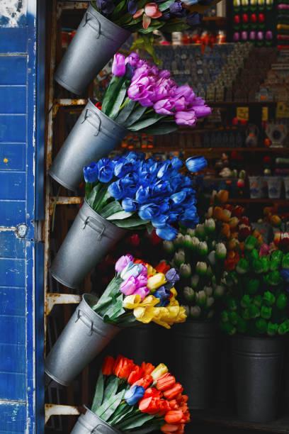 künstliche bunte tulpen in die eisen dekorativen eimer auf dem blumenmarkt in amsterdam - günstig nach amsterdam stock-fotos und bilder