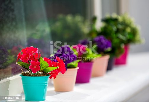 Artificial plants in the colorful flowerpot in front of the window.