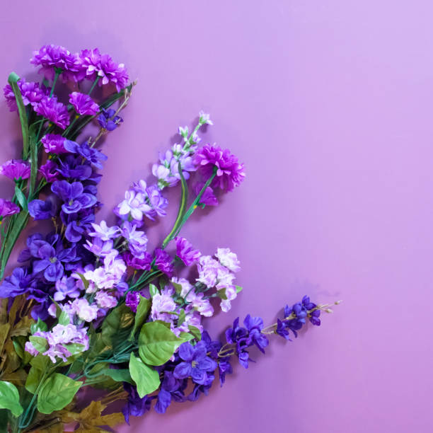 Artificial Purple Flowers On A Mauve Background stock photo