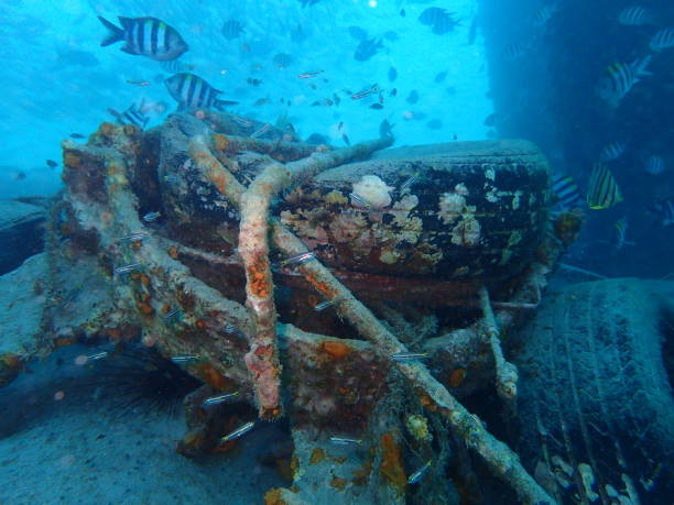 artificial reef - artificial reef stock pictures, royalty-free photos & images