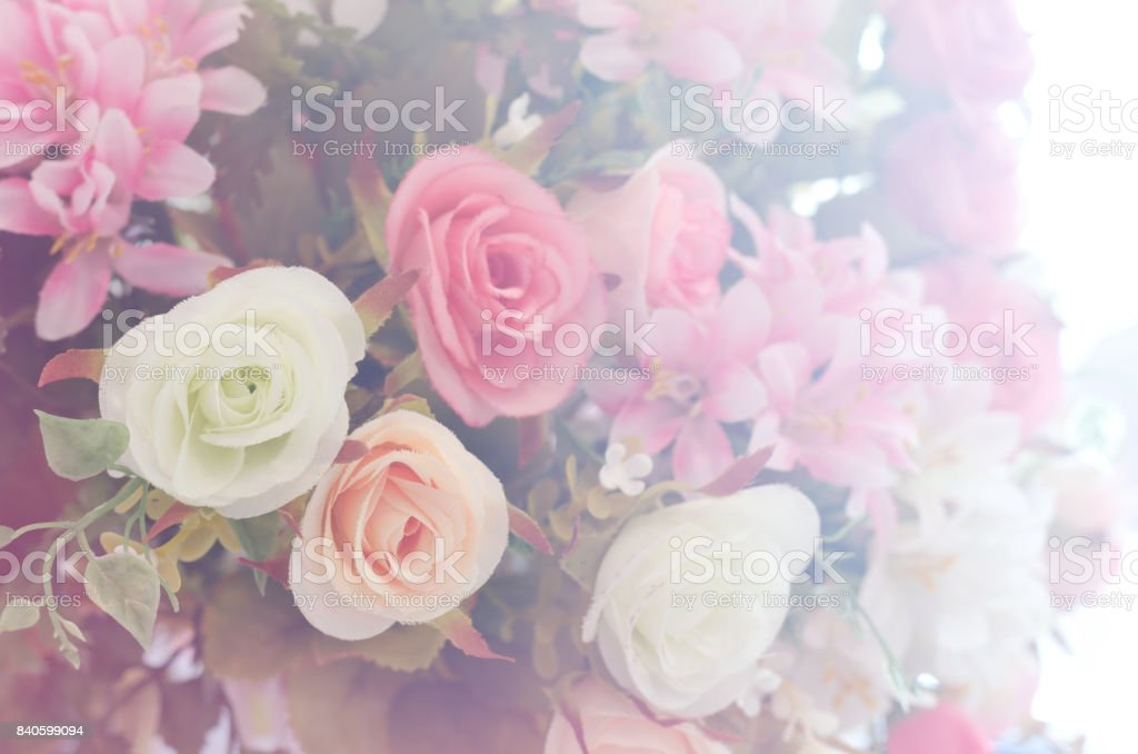 Artificial roses flower bouquet and soft focus background with light flare stock photo