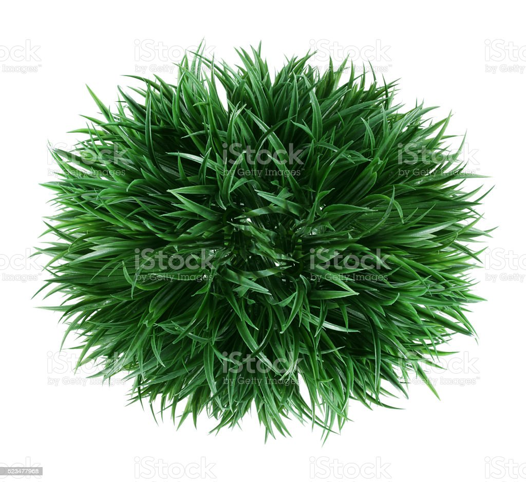 Artificial Shrub stock photo