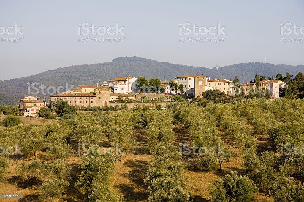 Artimino in tuscany royalty-free stock photo