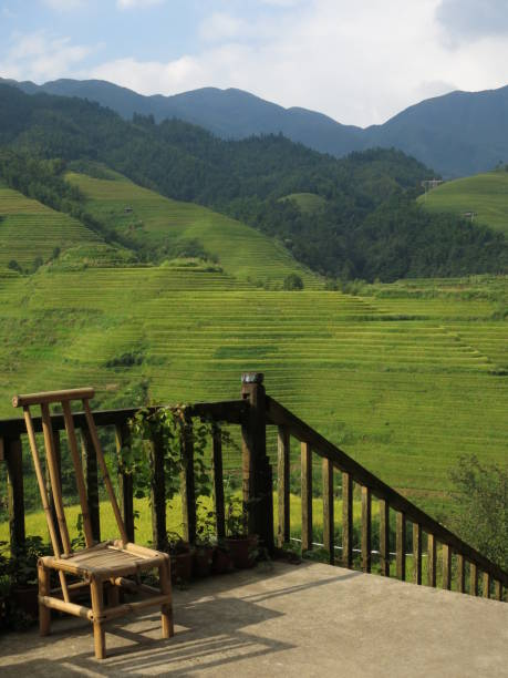 Artisan chair on terrace, overlooking longsheng rice paddies stock photo