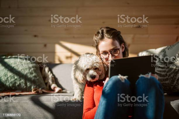 Artist drawing at home in company of her poodle dog picture id1136855170?b=1&k=6&m=1136855170&s=612x612&h=bjzw7vxqmh9xvnl2737hiy3wemhfnrzzyo4d d2ddcs=